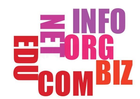 Kako poteka registracija domene?
